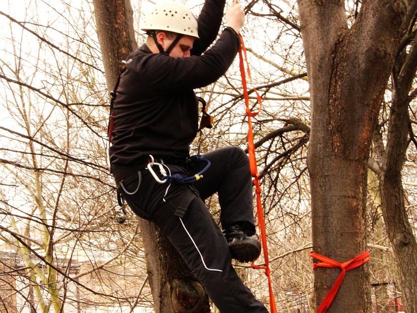 Pierwsza próba sił. Wejście na drzewo. Kto nie potrafi wbiegać na górę niczym po kokosy lub banany, może skorzystać ze specjalnej drabinki.
